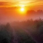 Утро туманное ноты